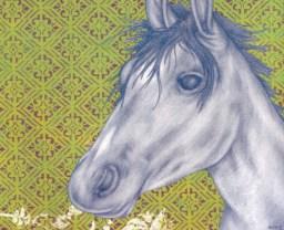 Horse, Spring