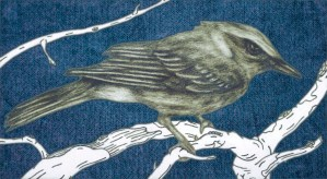 Bird, Winter