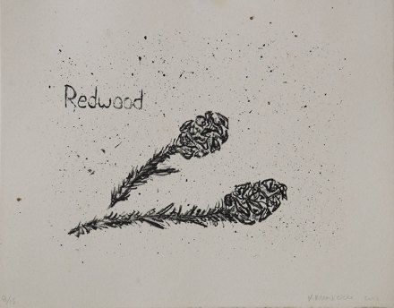 "Redwood, Tree Accessories - 8x10"" Lithograph, 2013"