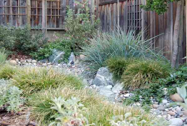 kelly marshall garden design