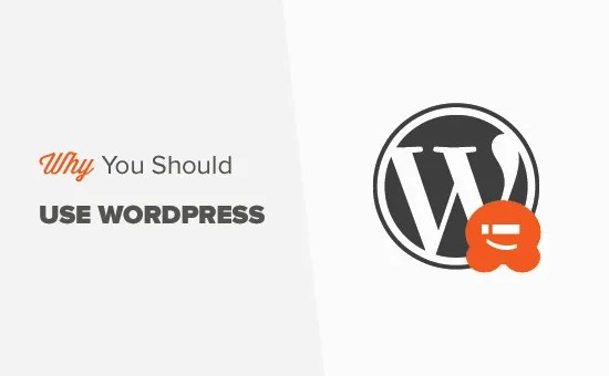 3 Important Reasons Why You Should Use WordPress for Your Website