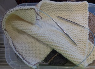 I started the second afghan, hoping to have both 3/4 done by Christmas.