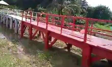 Rep. Atton-Wreh Dedicates Modern Footpath Bridge Linking Communities In Kakata