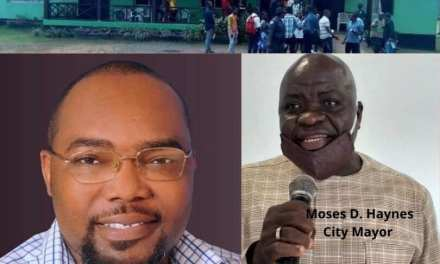 Buchanan: City Mayor Haynes and Lawmakers Grumbling Over US100k Report