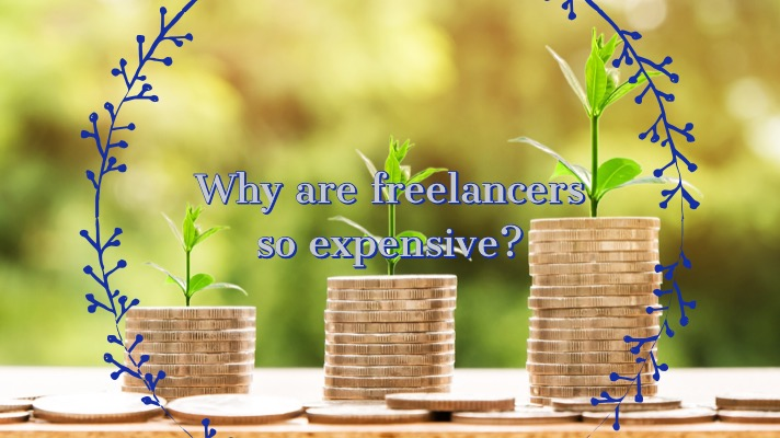 Freelance rates: An image with three stacks of coins and plants growing out of them with the text overlay - why are freelancers so expensive?