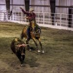 roping_a_steer_photo_by_pam_foreman_kmxt.jpg