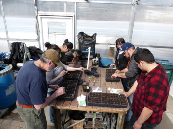 As part of the Spring Symposium, learning seedling transplanting at Strawberry Fields Nursery, the Larsen Bay and Ouzinkie teams. Courtesy of Small Tribes of the Kodiak Archipelago- Economic Stability through Food Security
