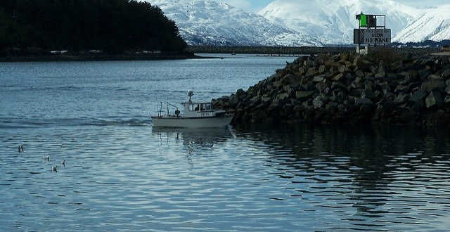 Fisheries Work Group reacts to cod decline and quota reduction