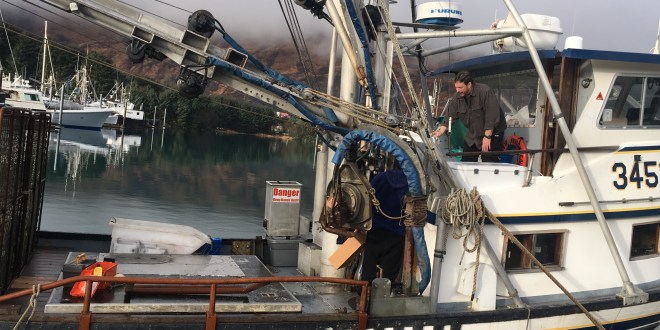 Fishermen set off for first tanner crab fishery since 2013
