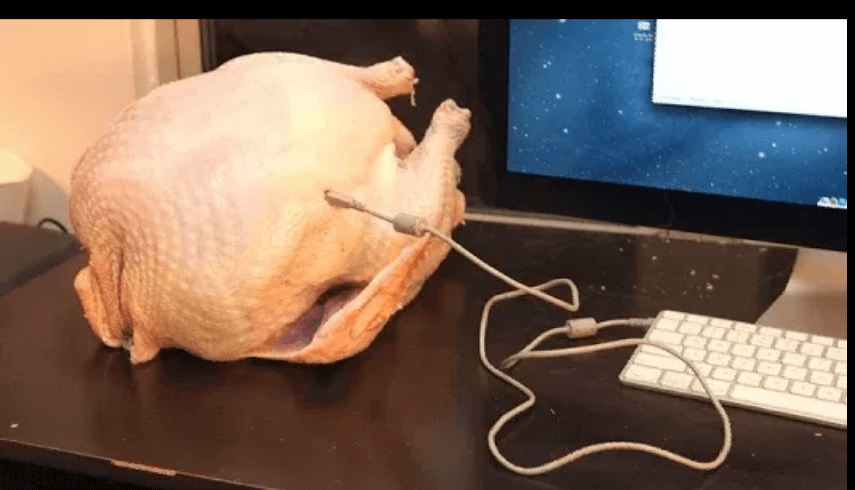 PSA To All Who Plan To Cook A Turkey This Year