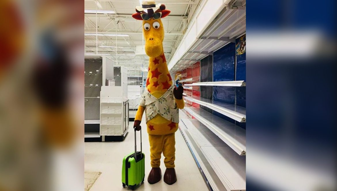 Toys 'R' Us returns as a zombie-like shell of its former self