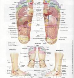 back massage diagram [ 1495 x 1906 Pixel ]