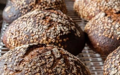 Maine Grains Rise to the Occasion