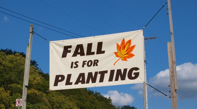Fall is for Planting!