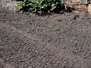 Newly tilled soil