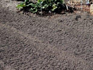 Newly tilled soil