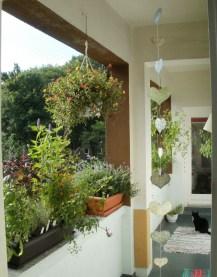 did a little bit of balkony-gardening... some herbs, purslane, jiaougulan, tomato, mini-cucumber, patchouli, cat nip