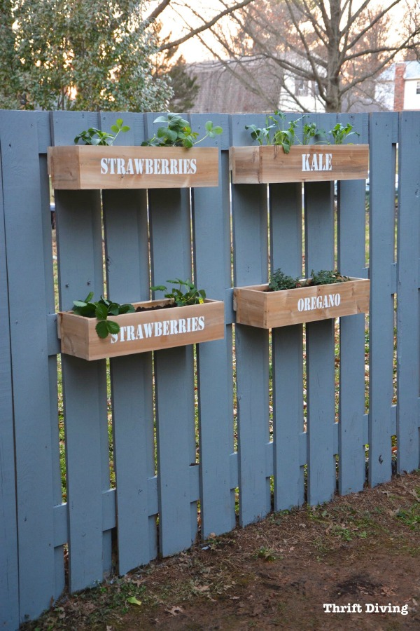How to Make a Hanging Fence Garden