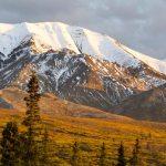 Denali Arctic Circle Vacation