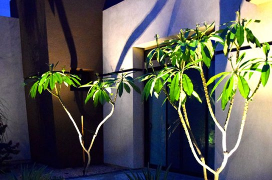 palm_springs_lighting_design_0087