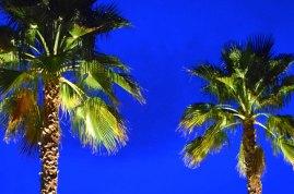 palm_springs_lighting_design_0464