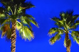 palm_springs_lighting_design_0464