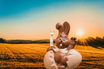 """Happy Easter y'all!"" by Daniel Cheung (unsplash.com)"