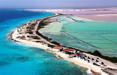 Bonaire Zoutpannen