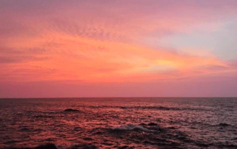 Column Arien Rasmijn | We zijn gedoemd