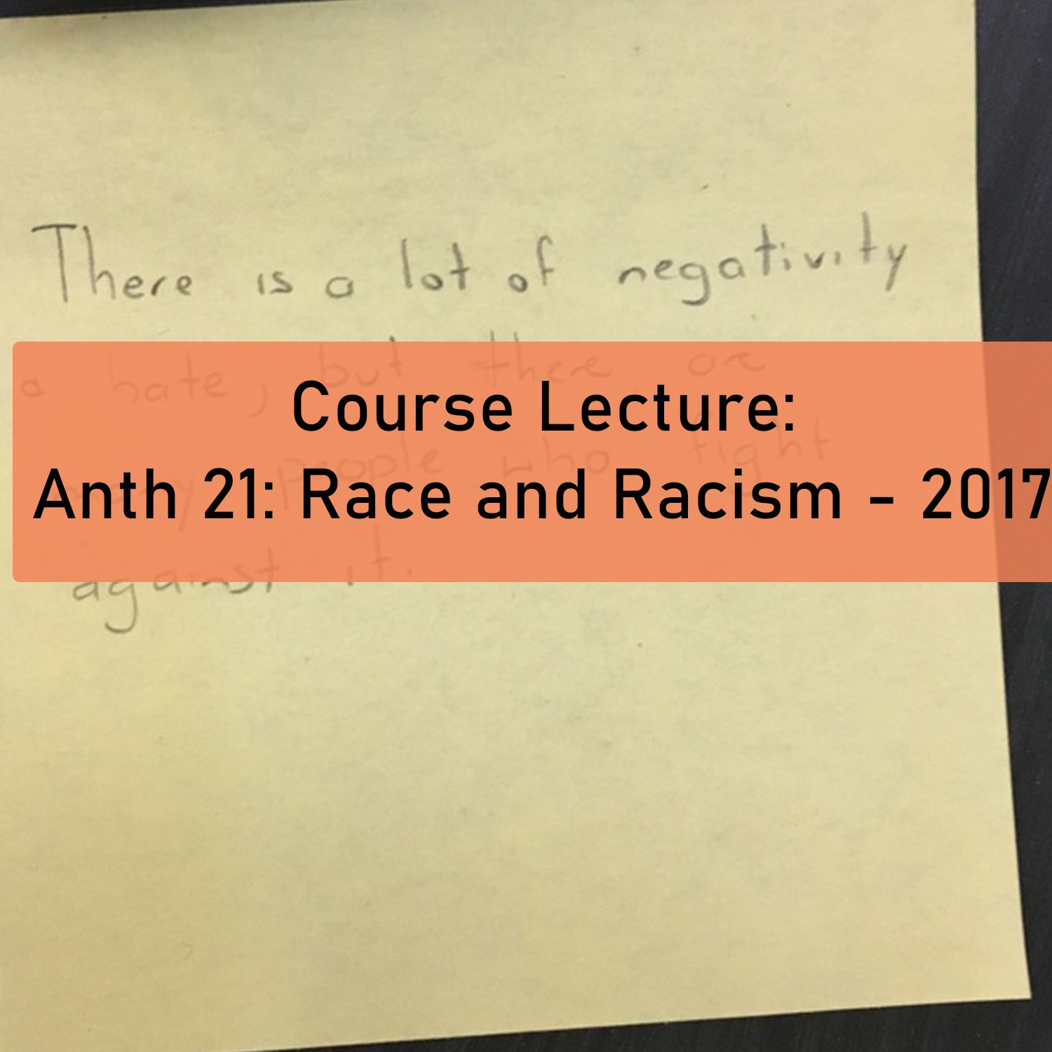 ANTH 21: Race and Racism - 2017