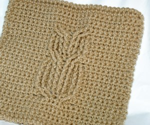 Owl Washcloth