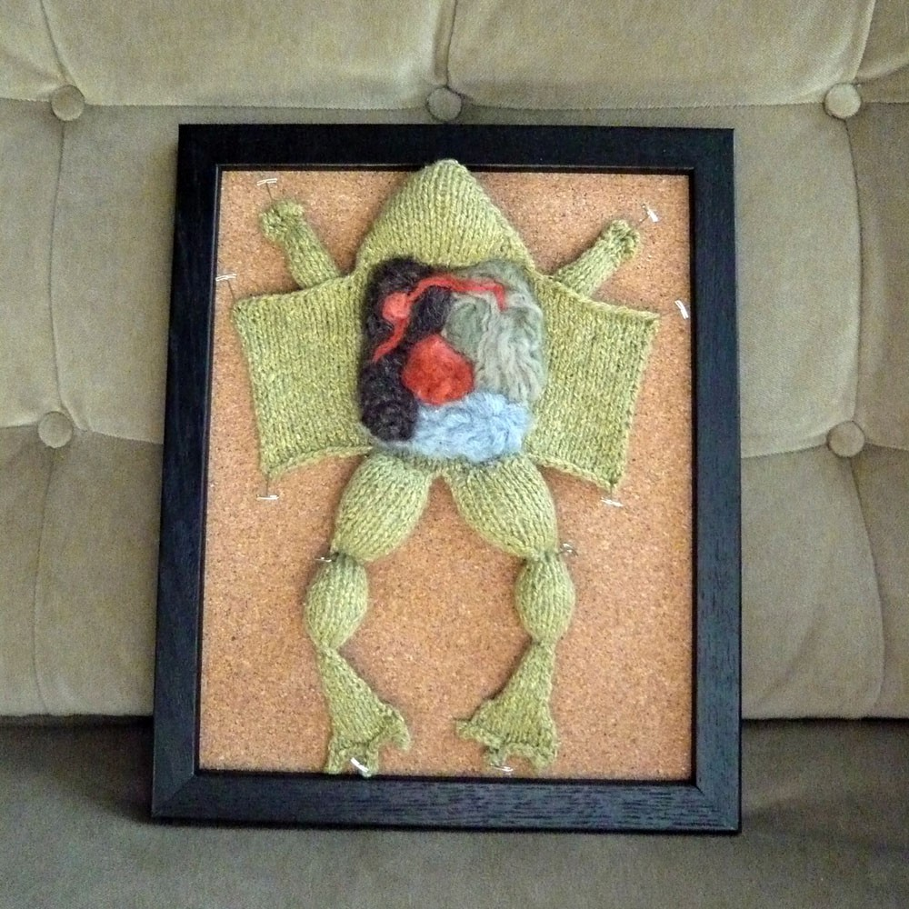 CraftyHedgehog\'s Disected Frog