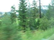 Speed blurred