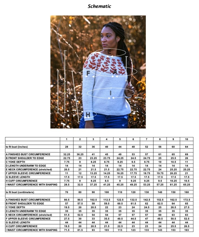 Sizing Schematic for the Milkweed sweater