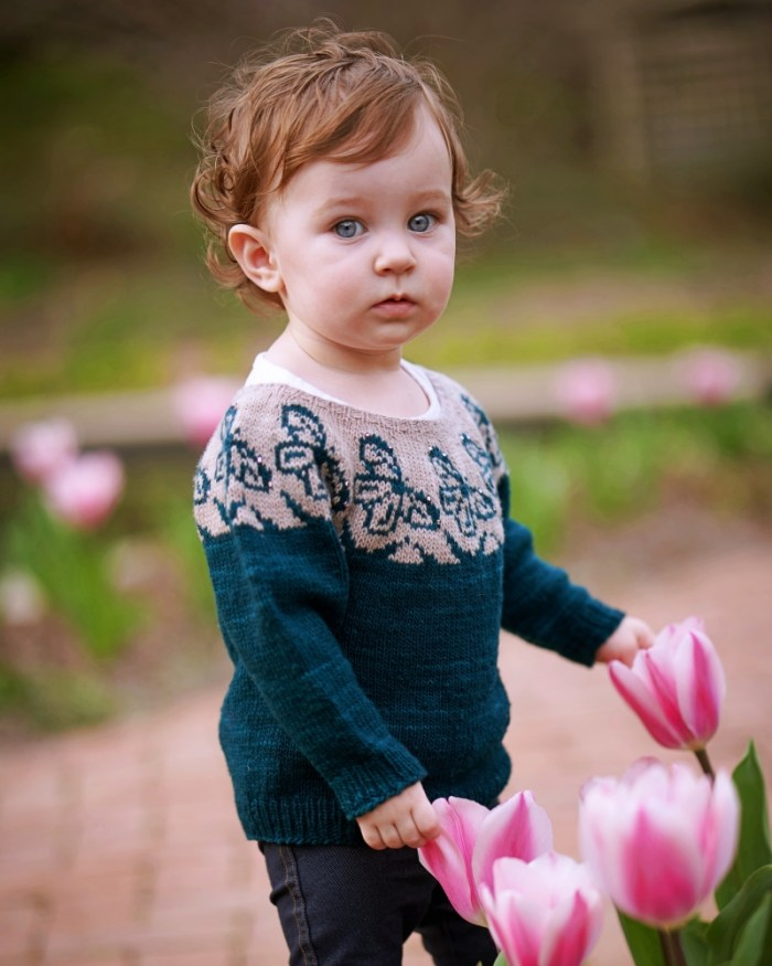 A young toddler wears a teal and gray hand knit sweater with butterfly motifs in the yoke