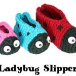 ladybug_slippers