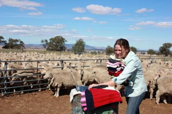 australia knitters cooperative