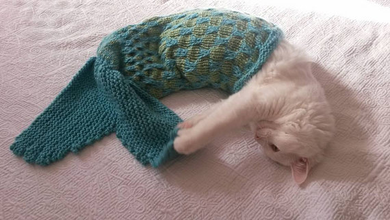 Knit a Mermaid Tail for Your Pet