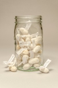 Jar of Little White Lies