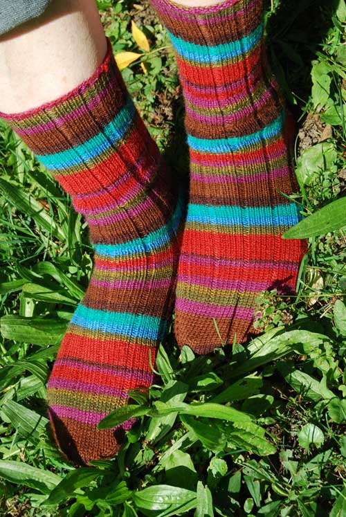 My Socks at Home in the Garden
