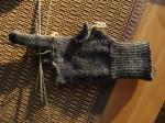 Silkie Glove 1