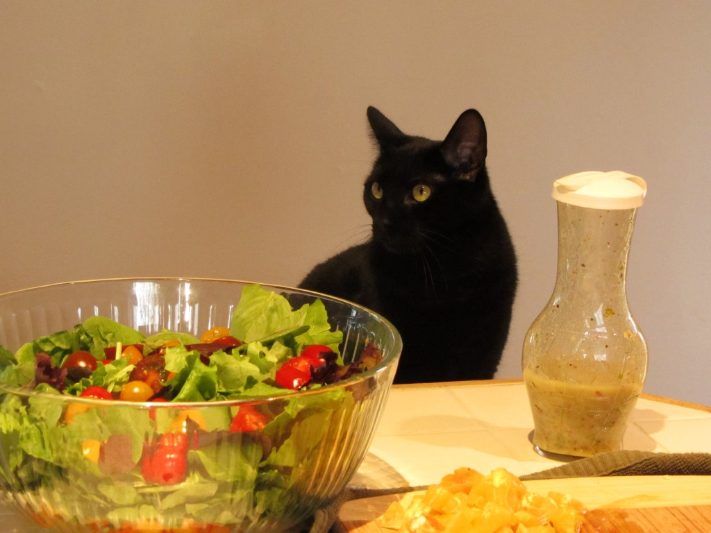 Floyd Makes Salad
