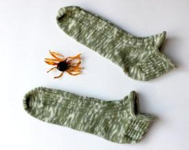 Stroll_Coneflower_socks