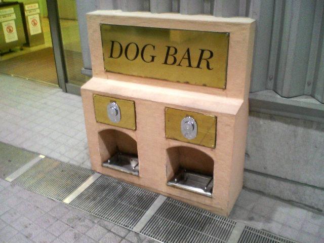 DOG BAR お台場
