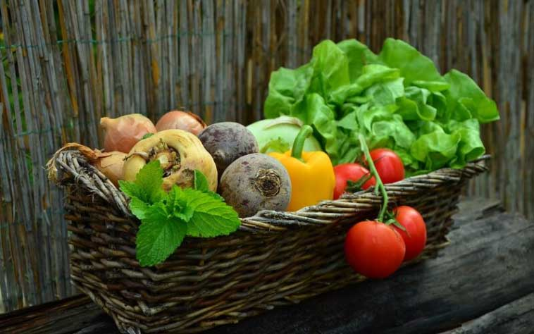 right vegetables for type 2 diabetes