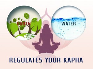 Regulates your Kapha