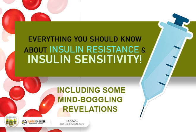 Insulin Sensitivity|Insulin Resistance