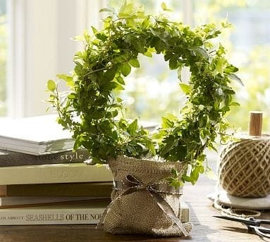 Circle of Ivy Topiary  KnockOffDecorcom