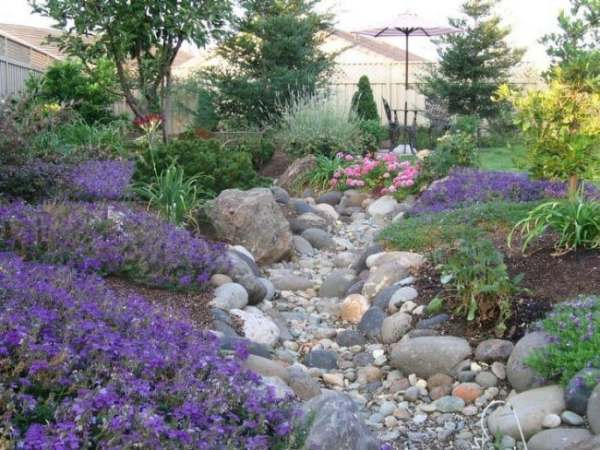 6 ideas landscaping with natural
