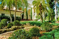 Landscape ideas South Florida front yard